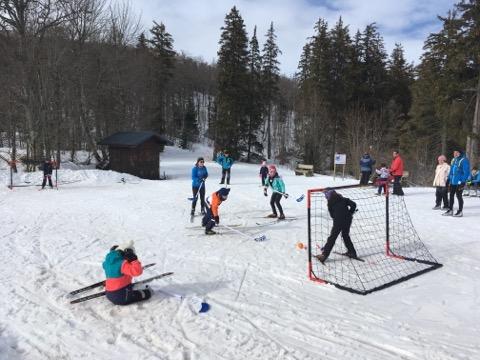 Hockey sur neige
